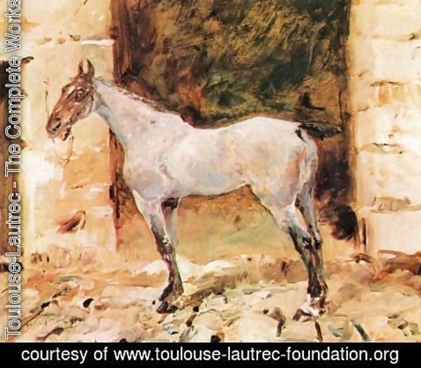 Toulouse-Lautrec - Tethered Horse